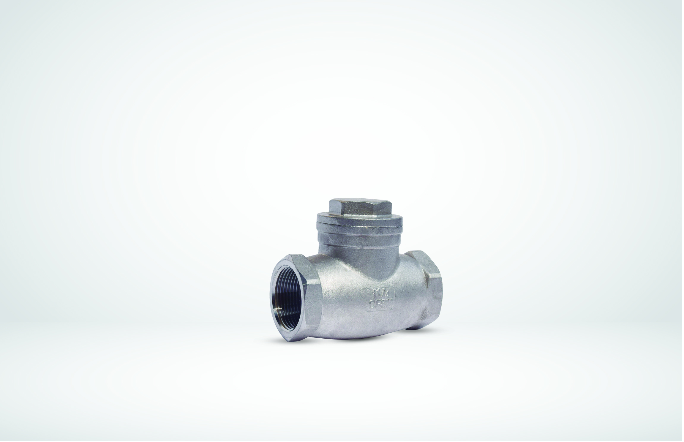Swing Checkvalve